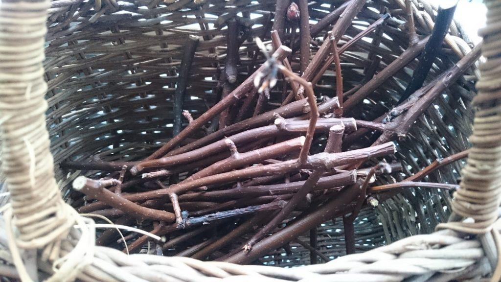 梨の木・細め‥主に箸の先くらいの太さ