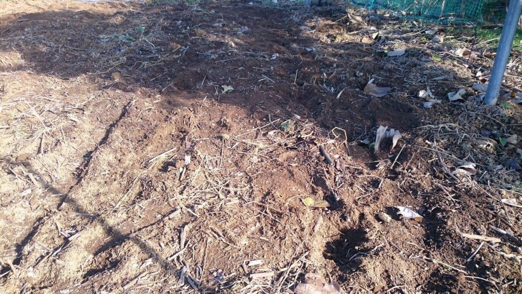 木を撤去したあとの場所にはフカフカの土